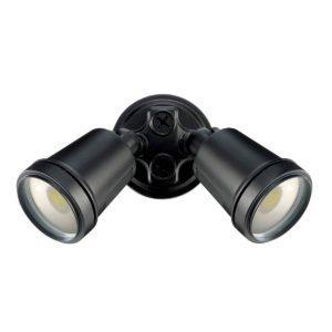 Hunter III 2 Light LED Floodlight in Black