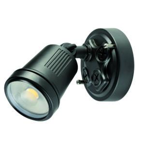 Hunter III 1 Light LED Floodlight in Black