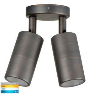 240v Tivah Double Adjustable Wall Pillar Light Antique Brass